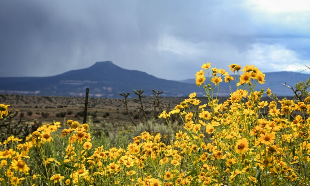 A view of Cerro Pedernal outside of Abiquiu, New Mexico