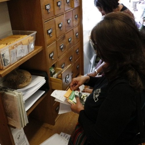 A woman sits in front of a seed catalog cabinet