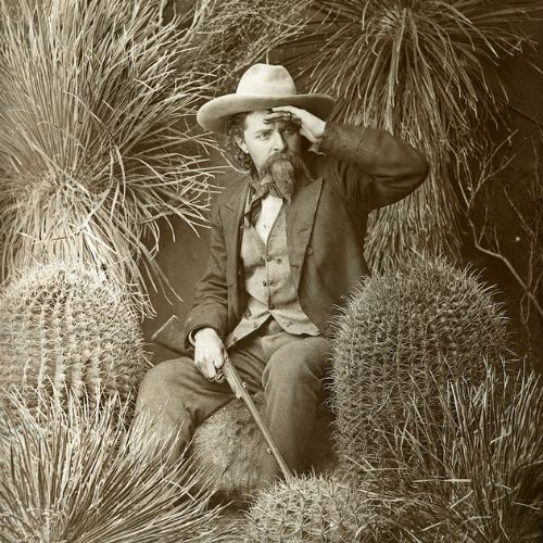 An old portrait of a man among cactus