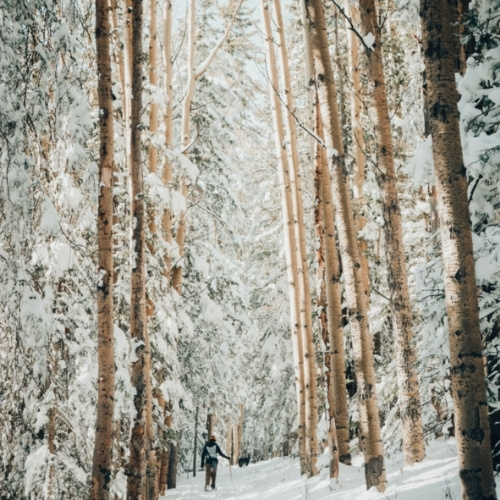 Snowshoeing in Taos, New Mexico