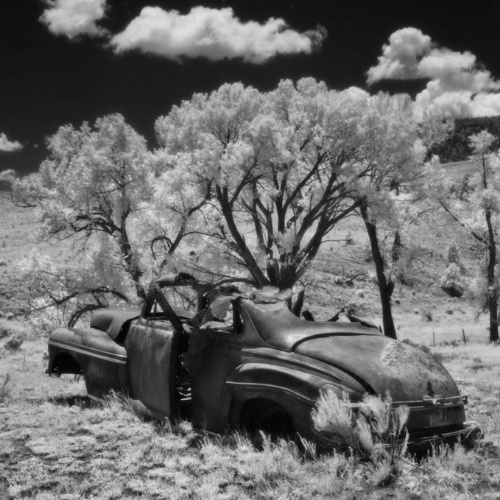 "Cody Brothers's photograph ""End of the Road, Elizabethtown, NM"""
